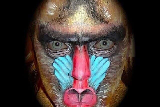 Male-mandrill-monkey-face-paint-art-min